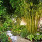 Thiết kế không gian sống mang đâm nét Việt xưa với tre, trúc