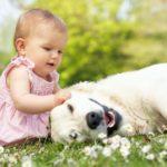 Những lợi ích khi cho trẻ nuôi thú cưng mà bạn chưa biết